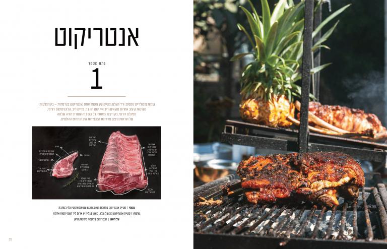 דוגמא הבשר-11